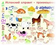 Испанский язык для начинающих учим алфавит видео