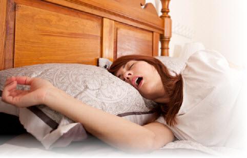 Почему шотландский и британский кот сопит и храпит во сне