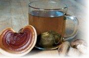 Что лечит чайный гриб